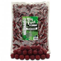 HALDORADO Big Feed - C21 Boilie - Carnat Condimenta 2,5 kg