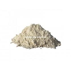 Baitshop - Wheat Gluten - Gluten de grau